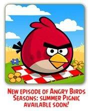 angry-birds-seasons-summer-pignic-1